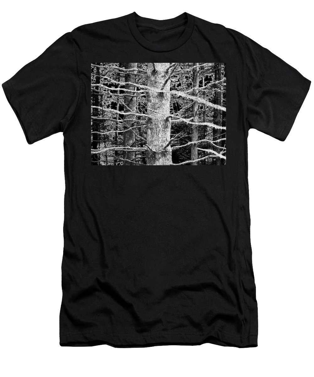 Woods Men's T-Shirt (Athletic Fit) featuring the photograph Deep In The Woods by Will Borden