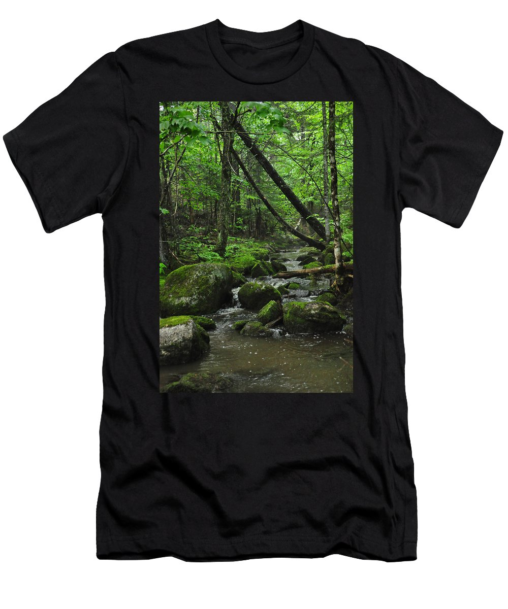 Stream Men's T-Shirt (Athletic Fit) featuring the photograph Deep Woods Stream 3 by Glenn Gordon