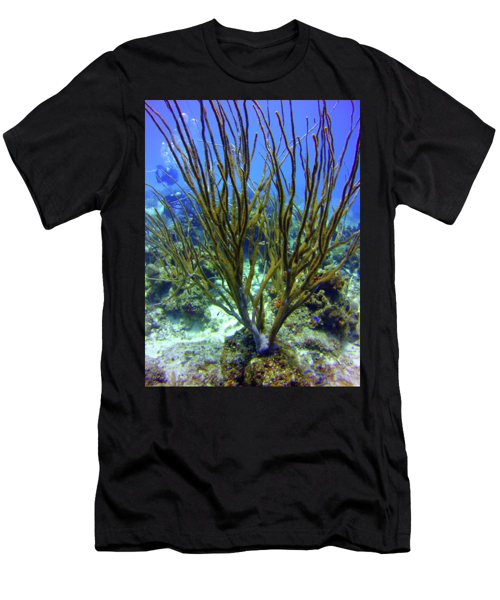 Deepwater Men's T-Shirt (Athletic Fit) featuring the photograph Deepwater Gorgonia by Bob Foudriat
