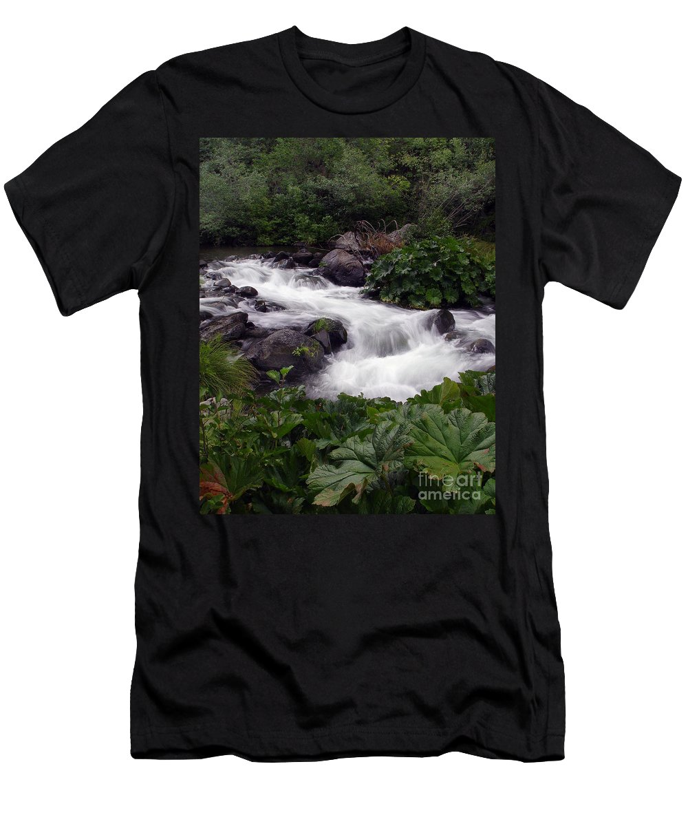 Creek Men's T-Shirt (Athletic Fit) featuring the photograph Deer Creek 07 by Peter Piatt
