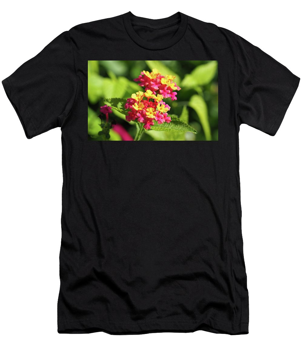 Floral Men's T-Shirt (Athletic Fit) featuring the photograph Delicate Cluster by BiR Fotos