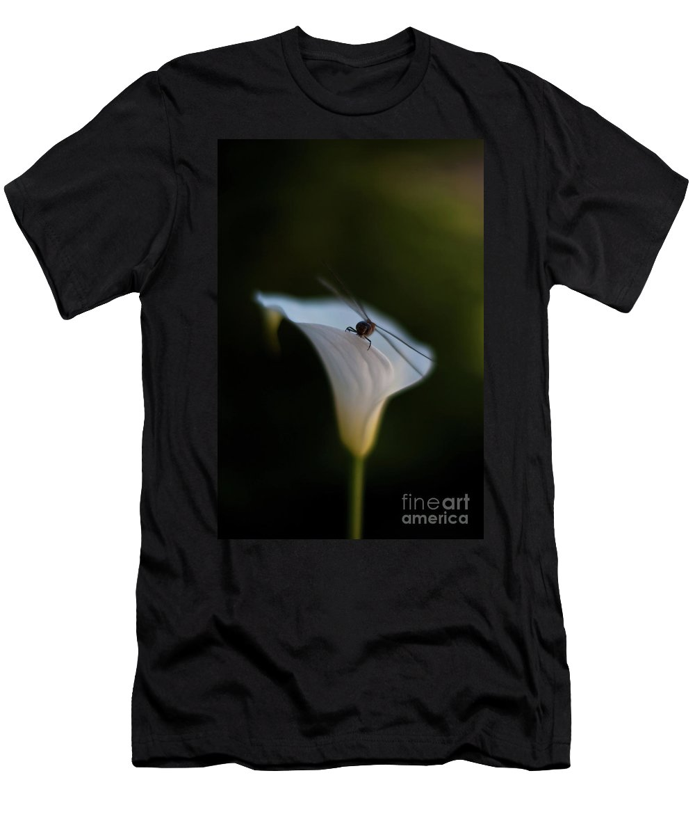 Dragonfly Men's T-Shirt (Athletic Fit) featuring the photograph Delicate Dance by Mike Reid