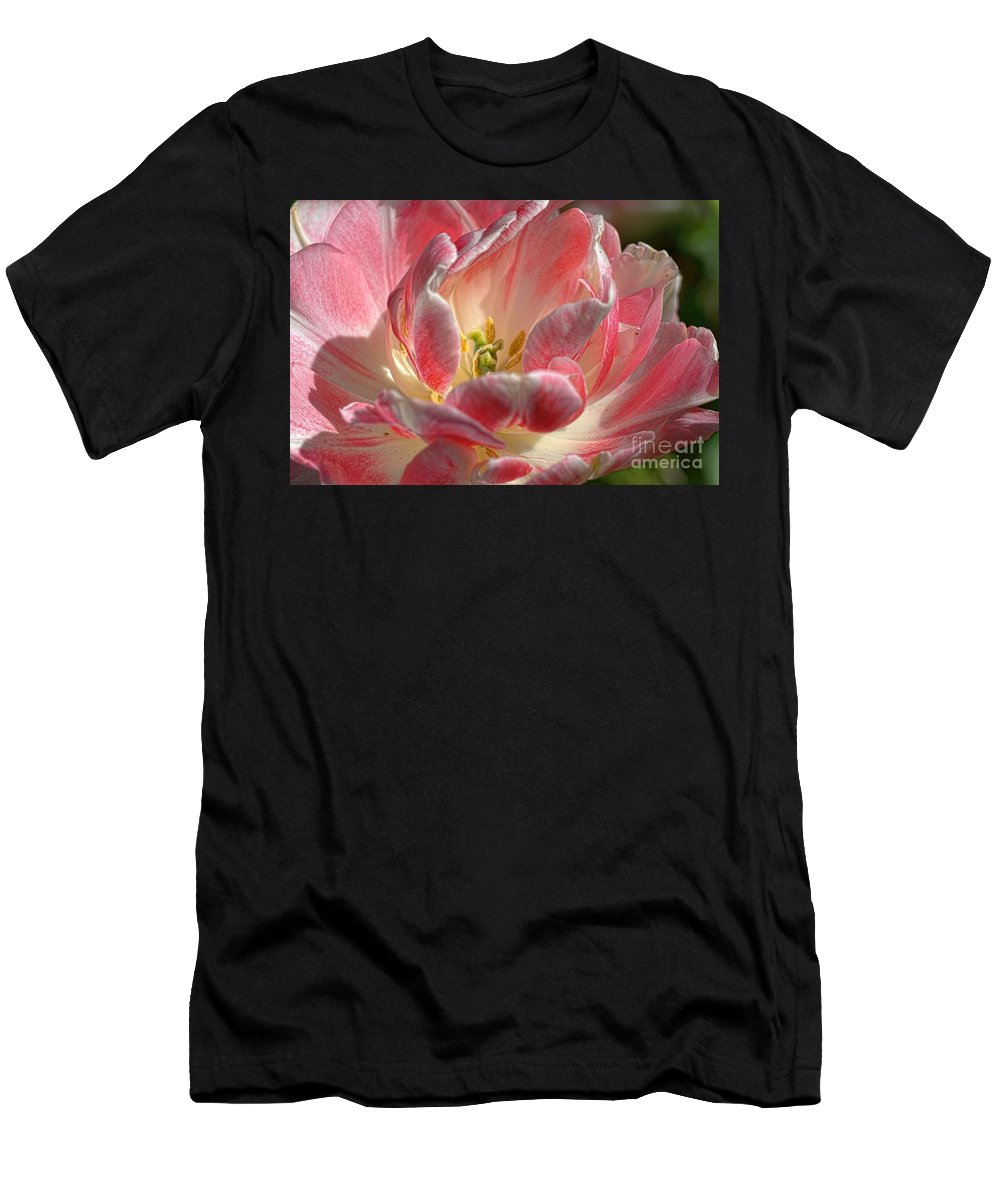 Tulips Men's T-Shirt (Athletic Fit) featuring the photograph Delicate by Diana Mary Sharpton