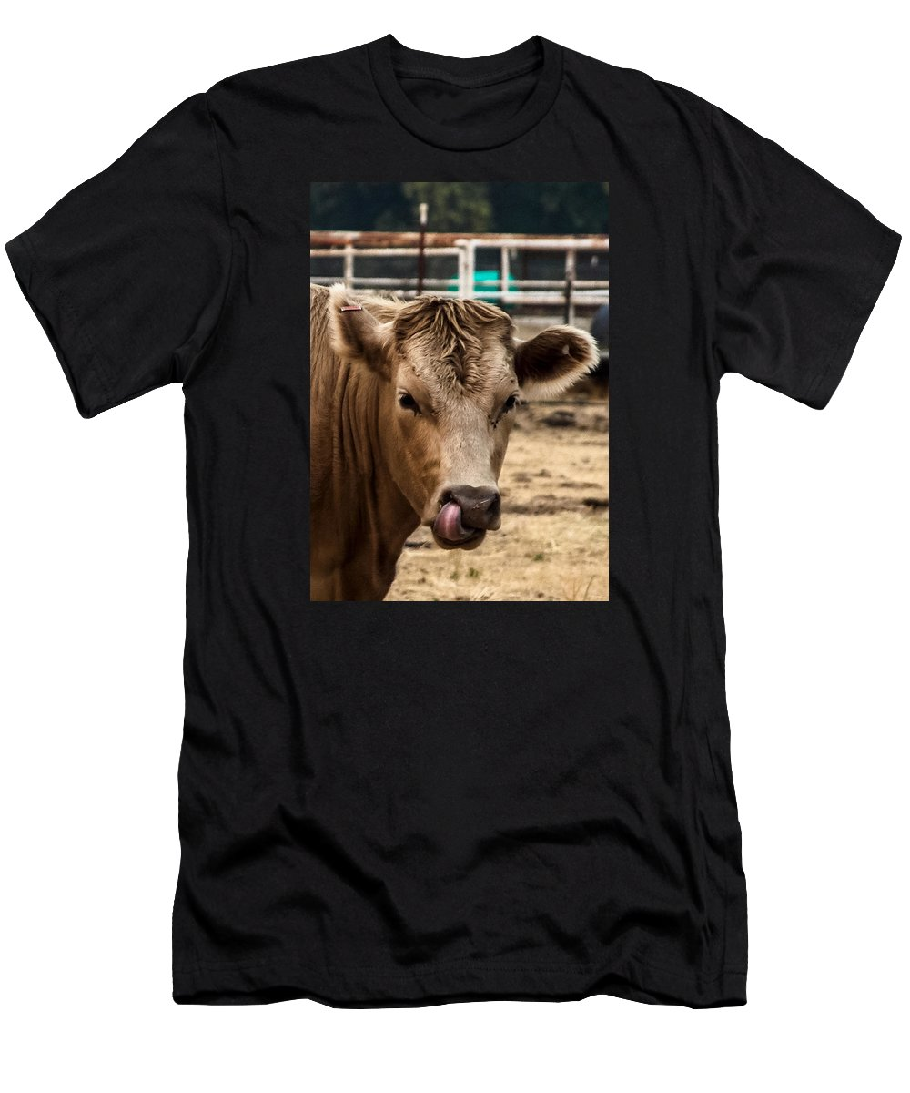 Cow Men's T-Shirt (Athletic Fit) featuring the photograph Derp Cow by Scarlet Starr