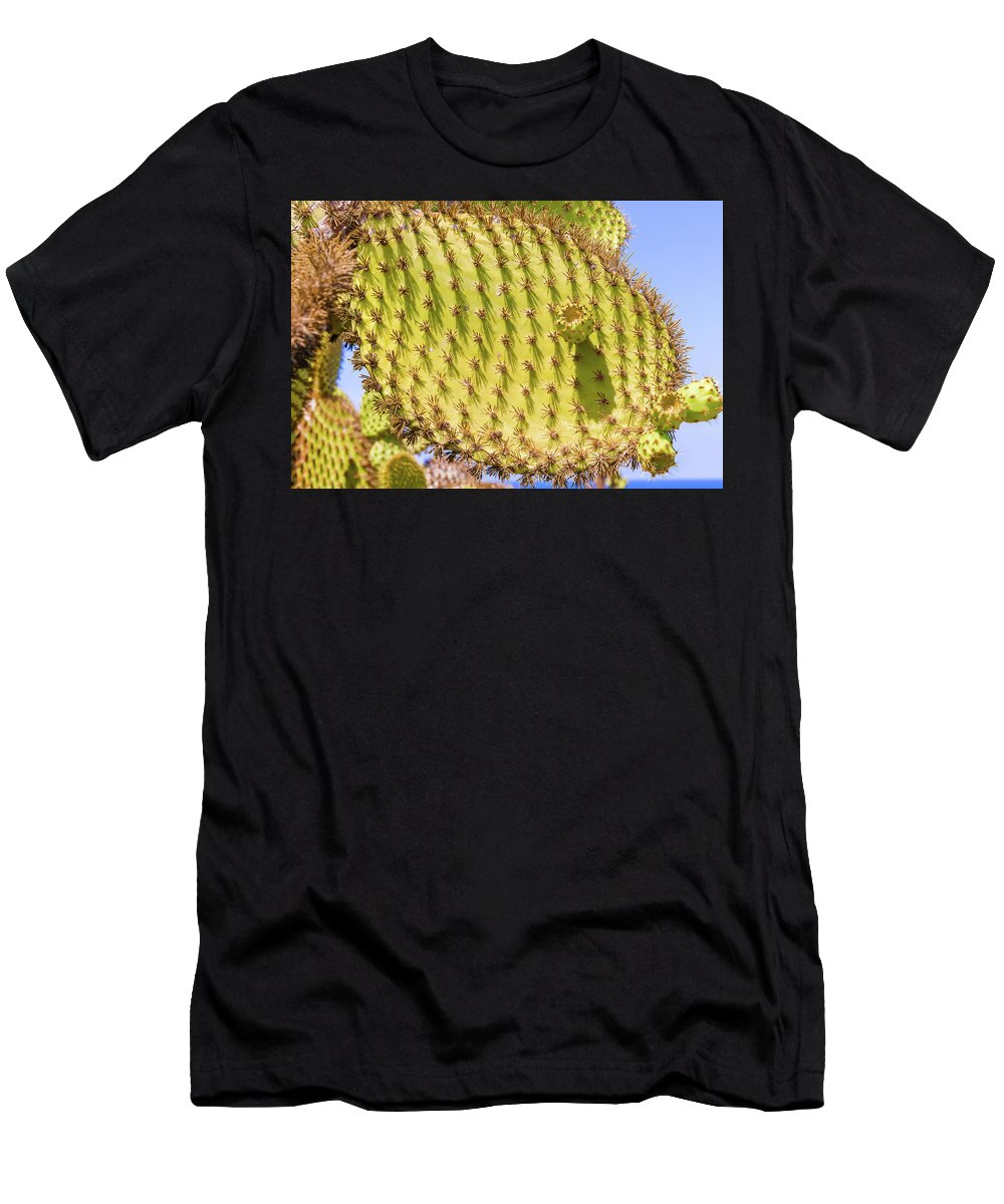 Cactus Men's T-Shirt (Athletic Fit) featuring the photograph Detail Of Cactus In Galapagos by Marek Poplawski