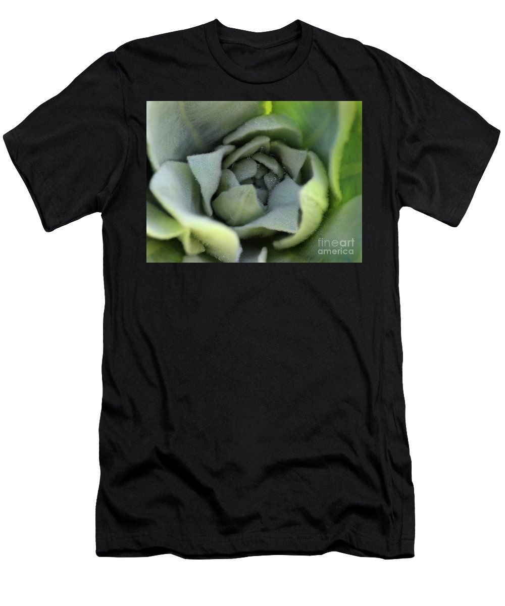 Mullein Men's T-Shirt (Athletic Fit) featuring the photograph Dew On Common Mullein by Karen Adams