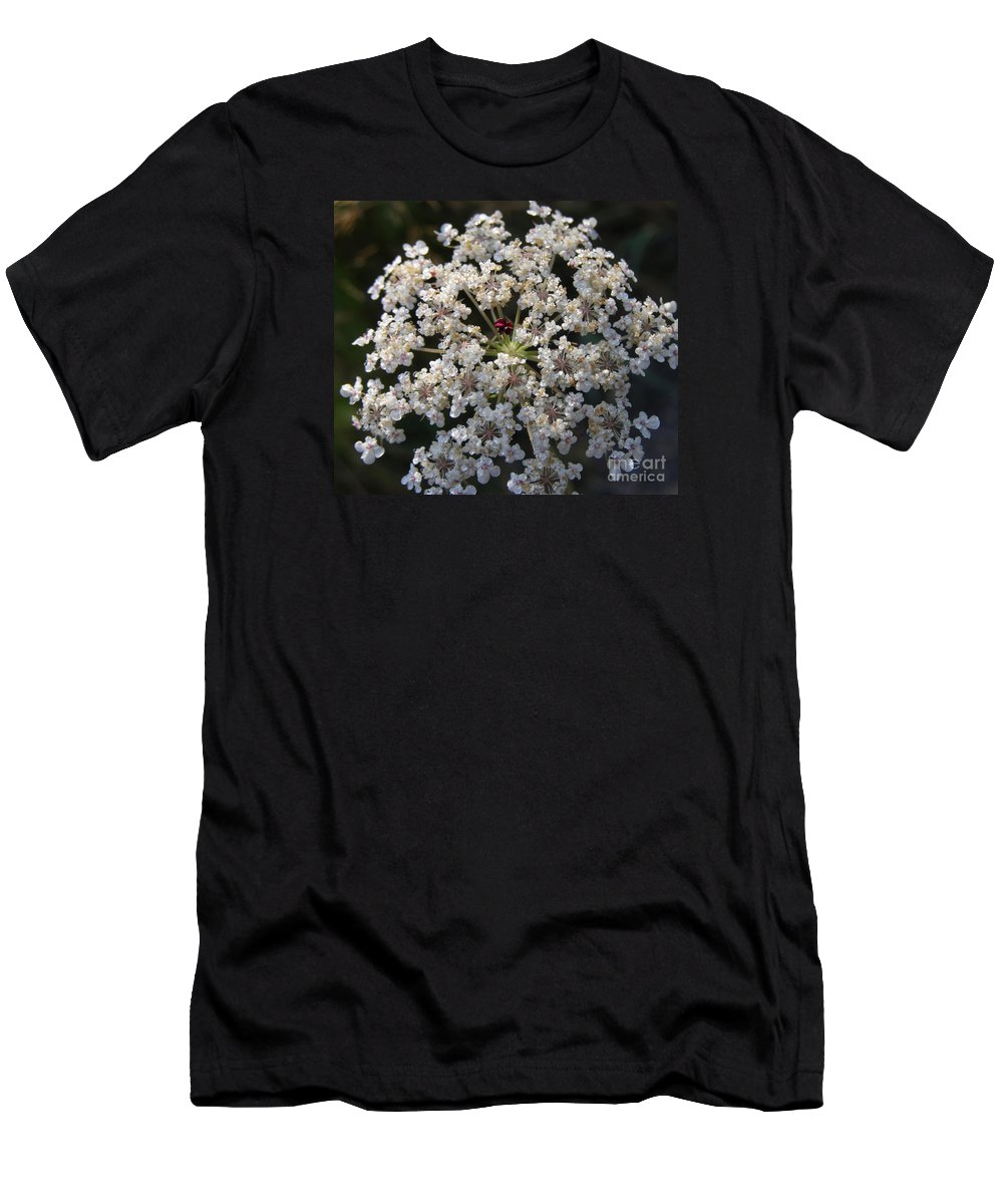 Wildflowers Men's T-Shirt (Athletic Fit) featuring the photograph Dew On Queen Annes Lace by Lynn Quinn