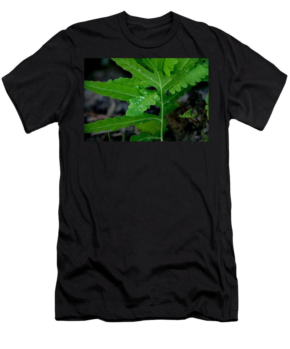 Ferns Men's T-Shirt (Athletic Fit) featuring the photograph Dewy Ferns by Samantha Flamingos