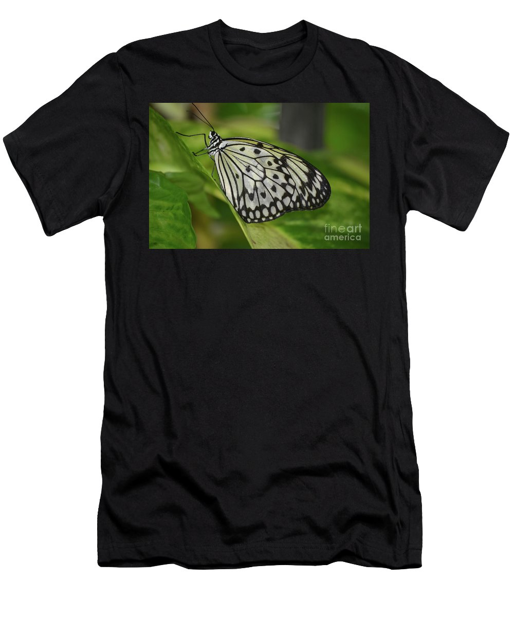 Tree-nymph Men's T-Shirt (Athletic Fit) featuring the photograph Distinctive Side Profile Of A White Tree Nymph Butterfly by DejaVu Designs