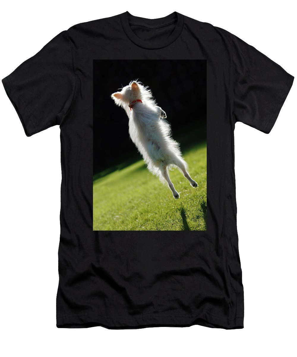 Animal Men's T-Shirt (Athletic Fit) featuring the photograph Dog - Jumping by Jill Reger