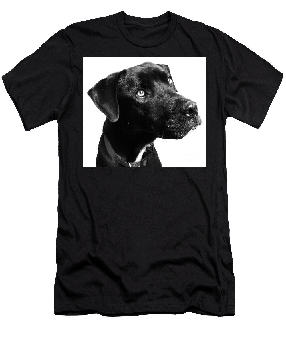 Dogs Men's T-Shirt (Athletic Fit) featuring the photograph Dog by Amanda Barcon