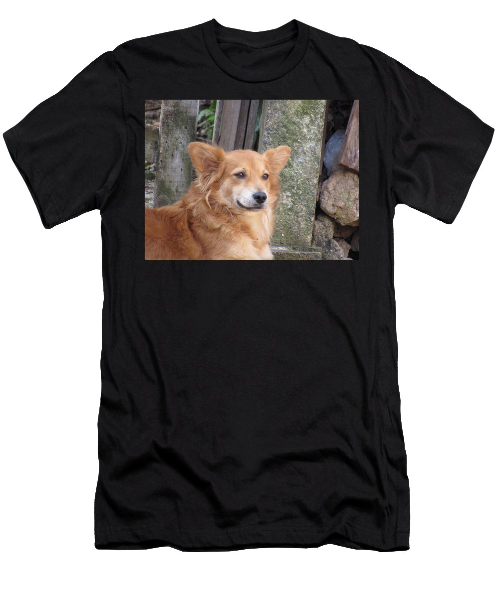 Men's T-Shirt (Athletic Fit) featuring the photograph Dog by Grazielle Costa