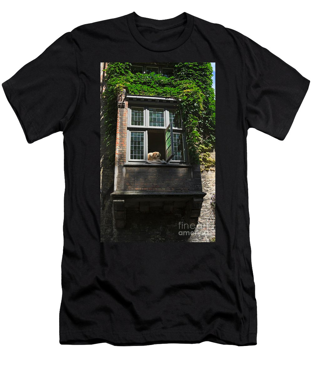 Dog Men's T-Shirt (Athletic Fit) featuring the photograph Dog In A Window Above The Canal In Bruges Belgium by Louise Heusinkveld