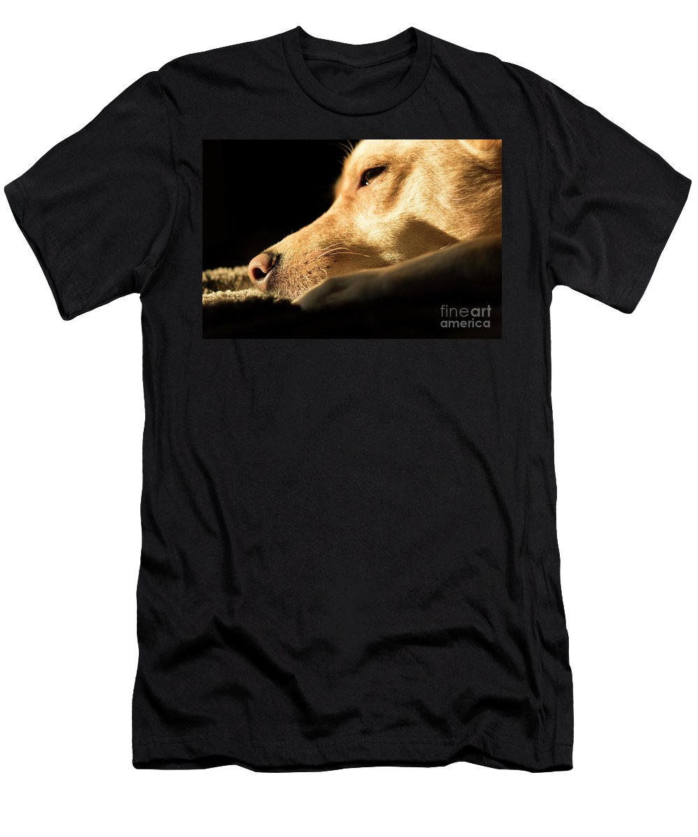 Dog Men's T-Shirt (Athletic Fit) featuring the photograph Doggy Dreams by Michelle Himes