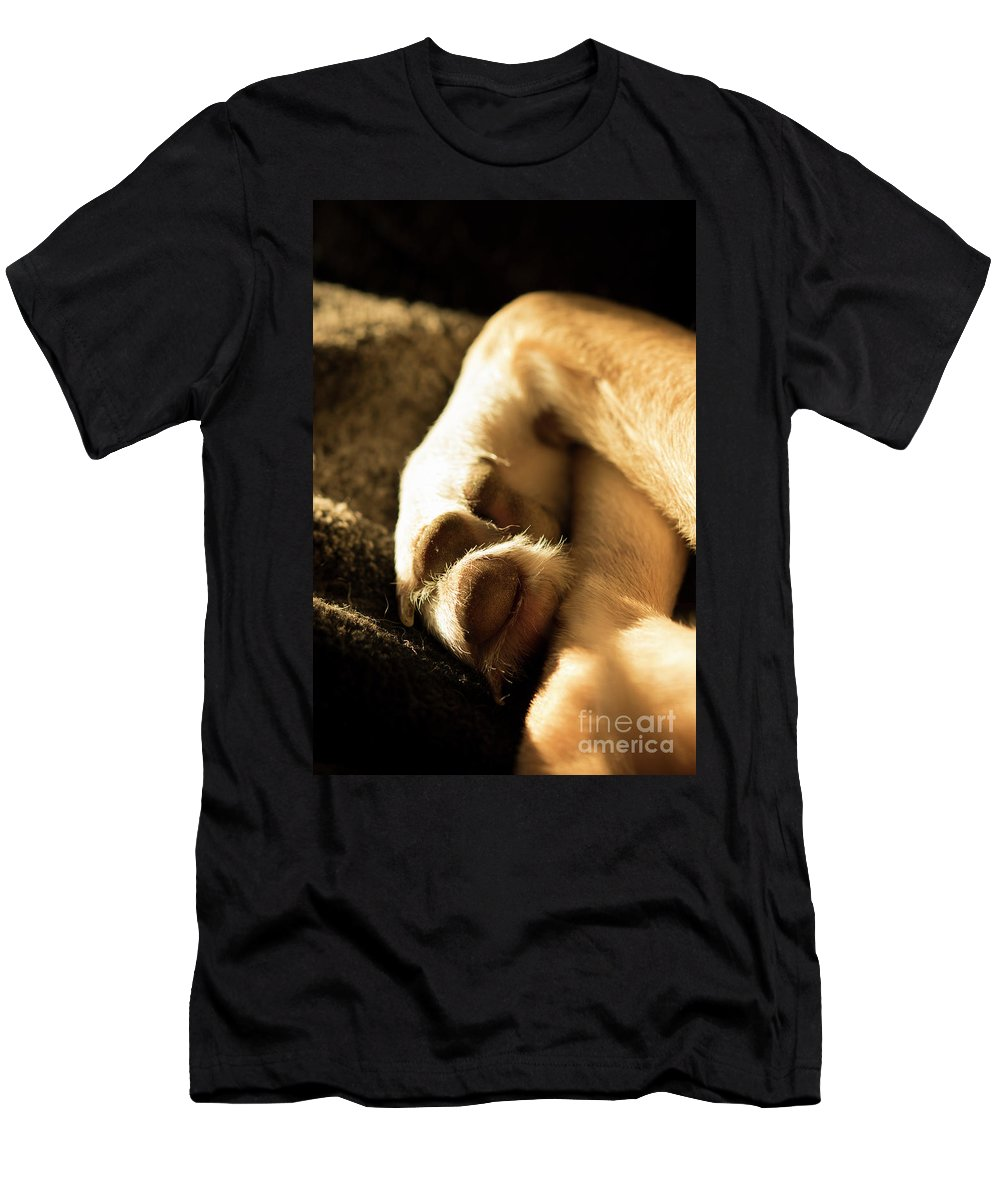 Dog Men's T-Shirt (Athletic Fit) featuring the photograph Dogs Paws by Michelle Himes