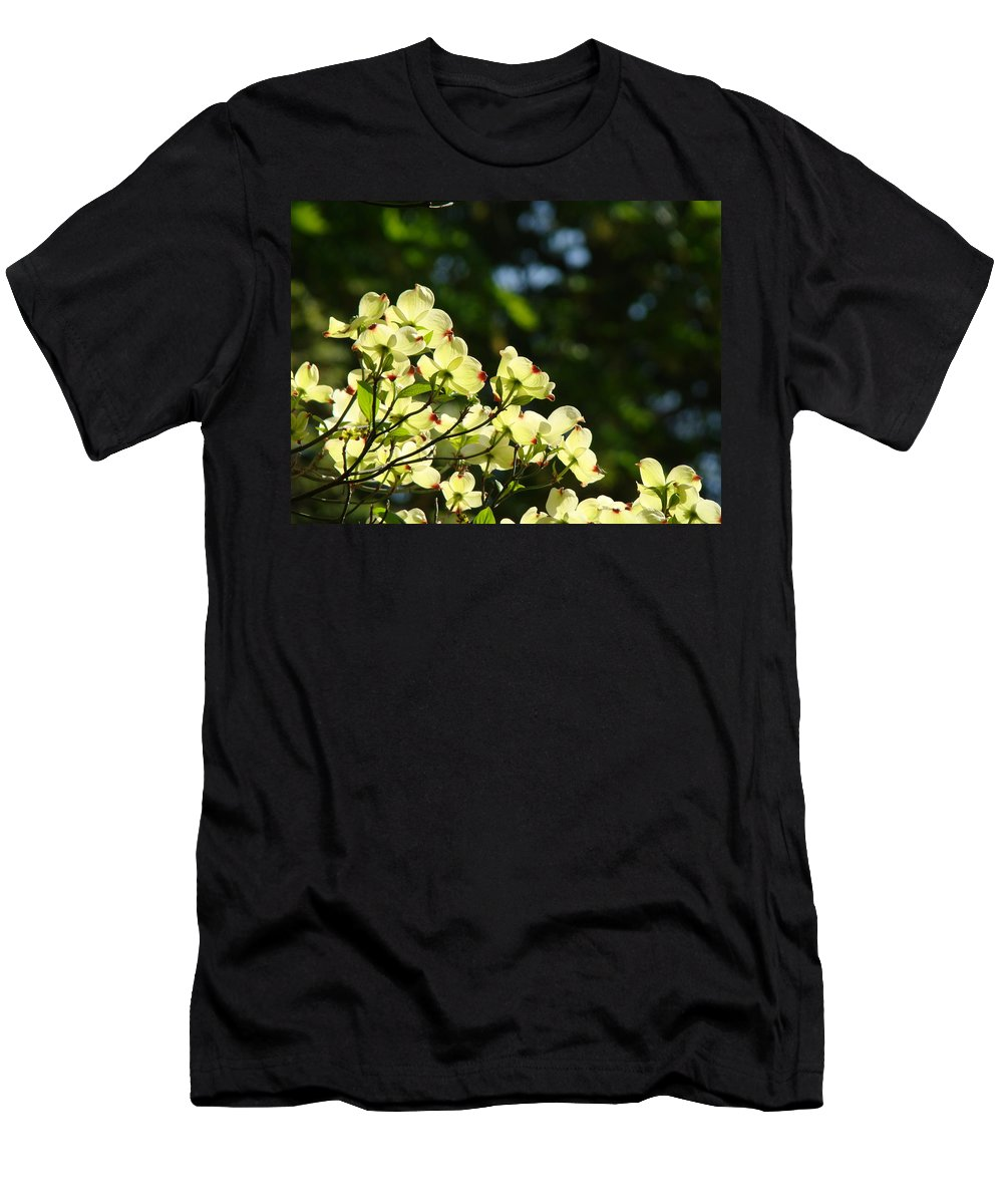 Dogwood Men's T-Shirt (Athletic Fit) featuring the photograph Dogwood Flowers White Dogwood Tree Flowers Art Prints Cards Baslee Troutman by Baslee Troutman