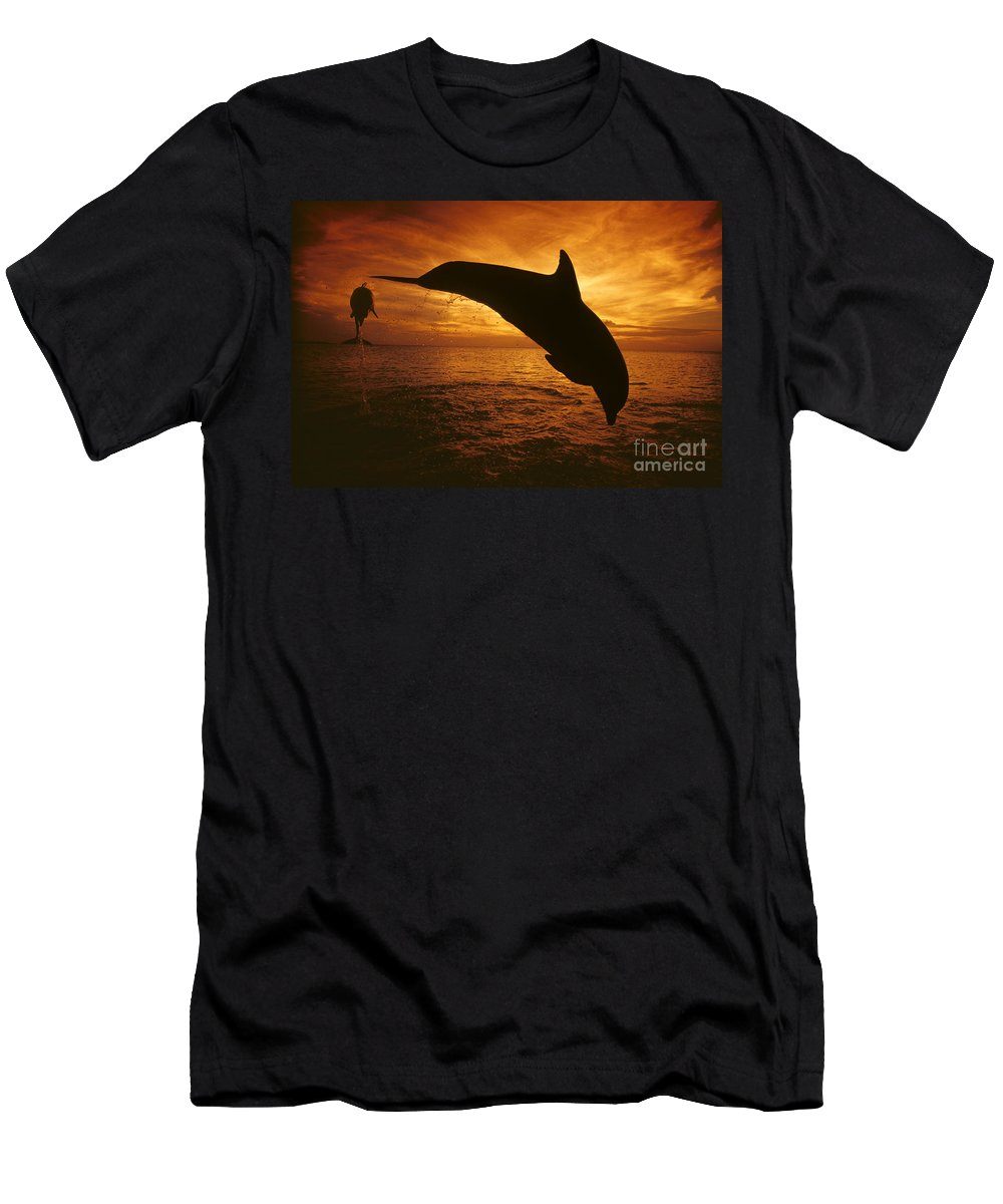 Amaze Men's T-Shirt (Athletic Fit) featuring the photograph Dolphins And Sunset by Dave Fleetham - Printscapes