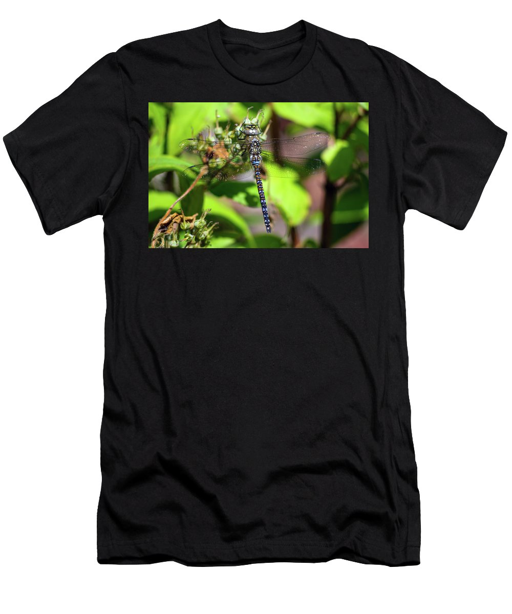 Dragonfly Men's T-Shirt (Athletic Fit) featuring the photograph Dragonfly by Lee Houston
