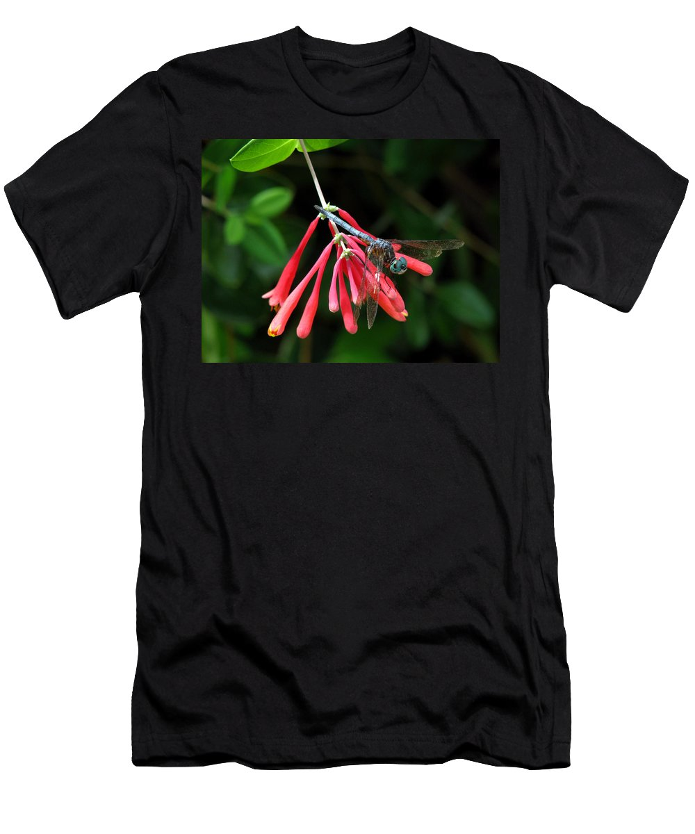 Nature Men's T-Shirt (Athletic Fit) featuring the photograph Dragonfly On Honeysuckle by Peg Urban