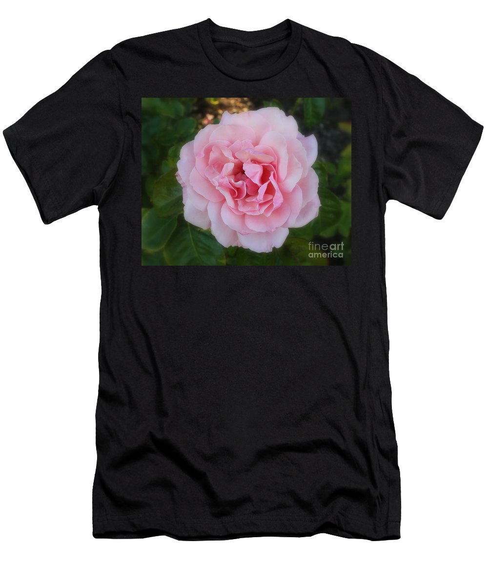 Rose Men's T-Shirt (Athletic Fit) featuring the photograph Dream Rose by Carol Groenen