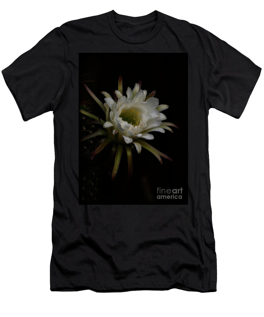 Torch Cactus Men's T-Shirt (Athletic Fit) featuring the photograph Dreams Of Night by Saija Lehtonen