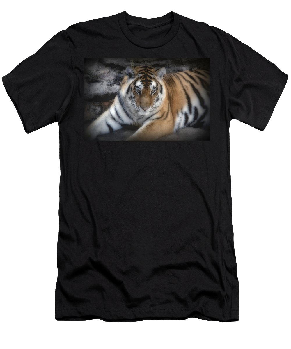 Aminal Kingdom Men's T-Shirt (Athletic Fit) featuring the digital art Dreamy Tiger by Sandy Keeton