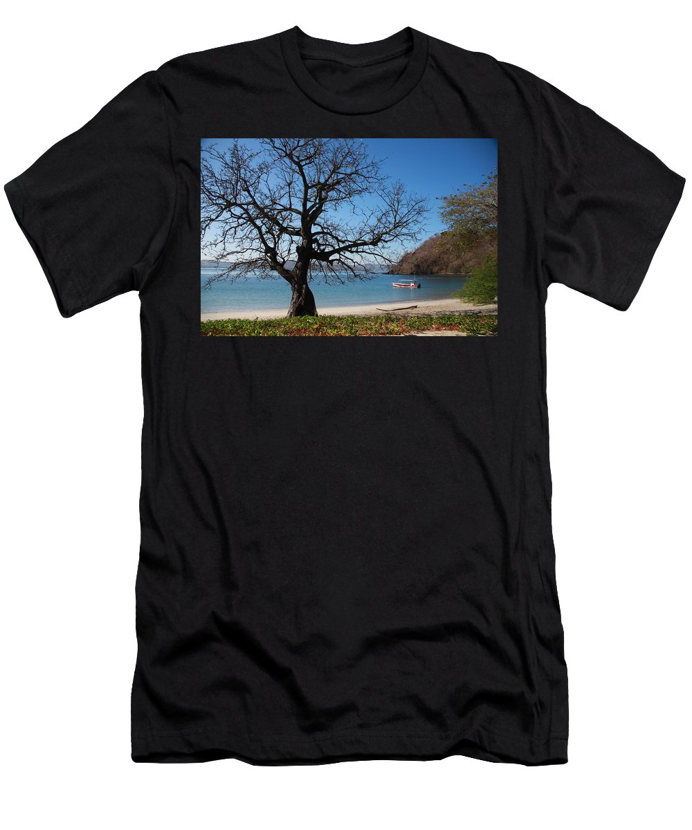 Dead Tree Dry Season Big Tree Costa Rica Men's T-Shirt (Athletic Fit) featuring the photograph Dry Season by Sandy Campbell