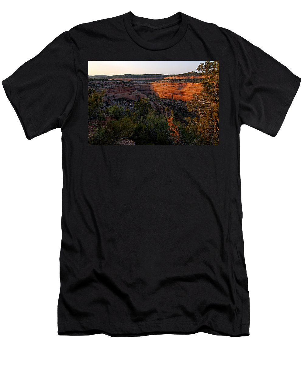 Colorado National Monument Men's T-Shirt (Athletic Fit) featuring the photograph Dusk At Colorado National Monument by Larry Ricker