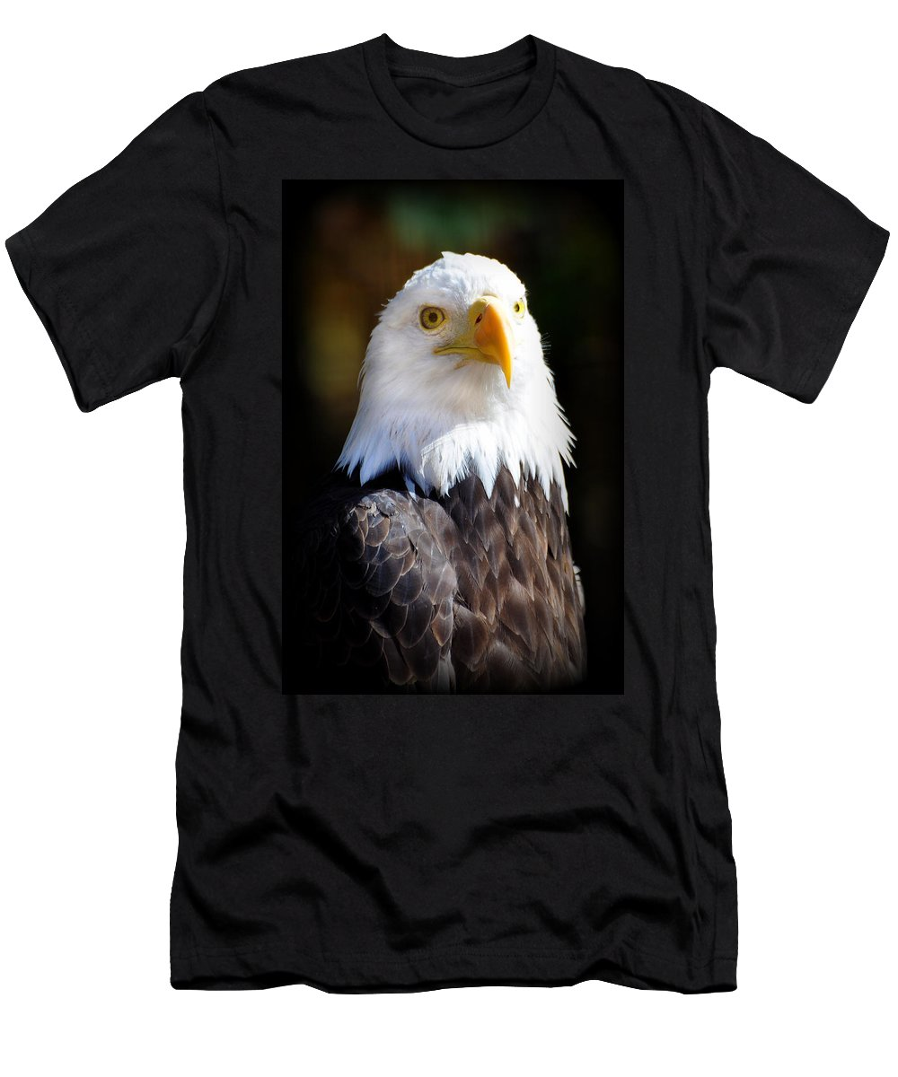 Eagle Men's T-Shirt (Athletic Fit) featuring the photograph Eagle 14 by Marty Koch