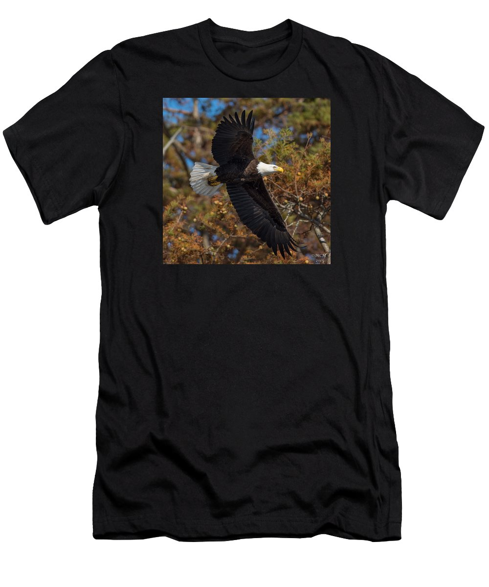 Bald Eagle Men's T-Shirt (Athletic Fit) featuring the photograph Eagle In Fall by MCM Photography