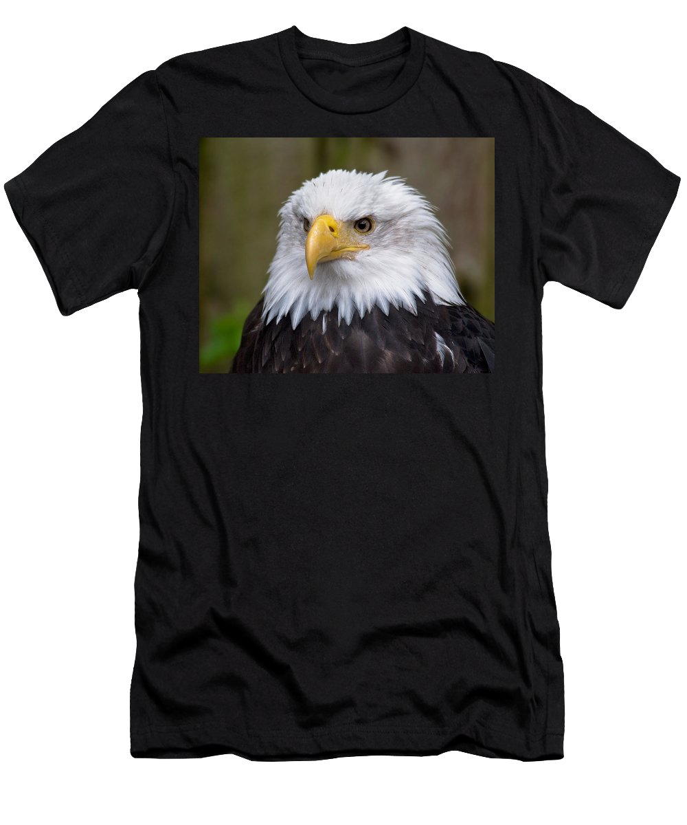 Eagle Men's T-Shirt (Athletic Fit) featuring the photograph Eagle In Ketchikan Alaska by Michael Bessler
