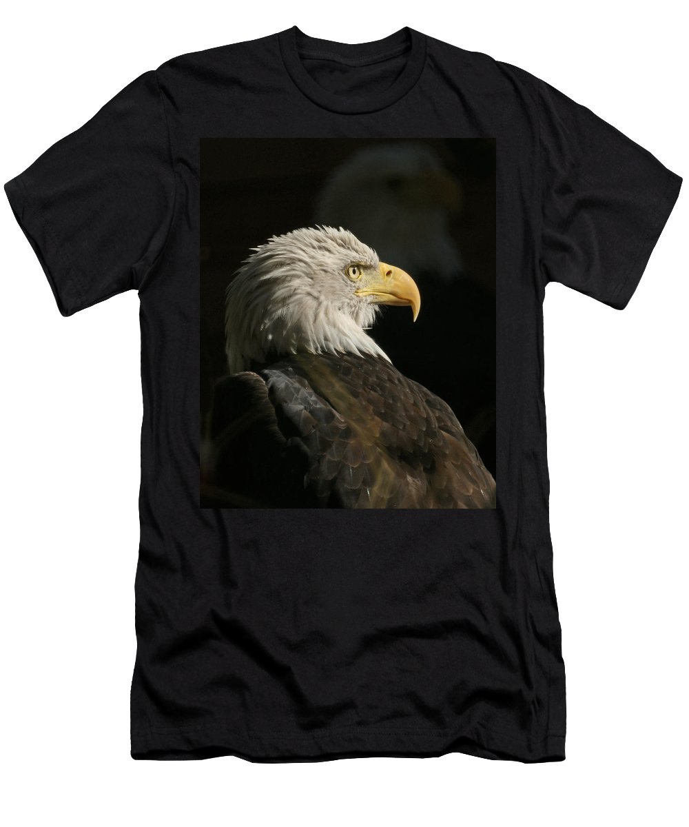 Animal Men's T-Shirt (Athletic Fit) featuring the photograph Eagle Profile 1 Original Photo by Ernie Echols