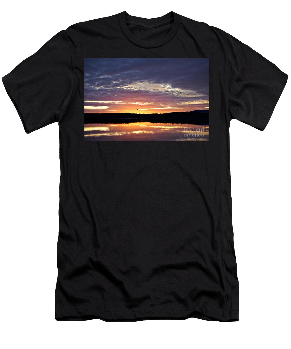 Acadia National Park Men's T-Shirt (Athletic Fit) featuring the photograph Early Light by Susan Garver