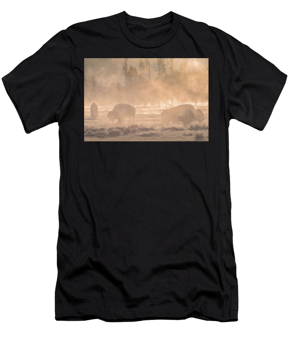 Bison Men's T-Shirt (Athletic Fit) featuring the photograph Early Morning Grazing In The Mist by CR Courson