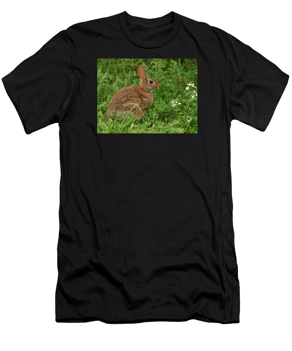 Easter Bunny Men's T-Shirt (Athletic Fit) featuring the photograph Easter Bunny by Grant Groberg