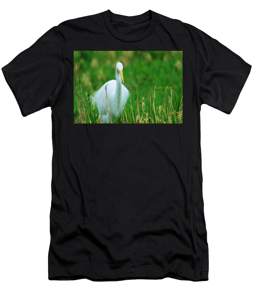 Egret Men's T-Shirt (Athletic Fit) featuring the photograph Egret Stare Down by Jeff Swan