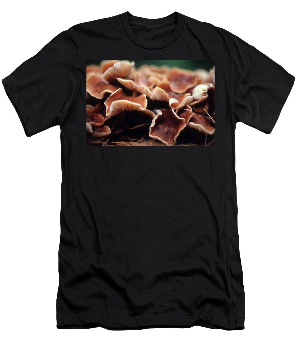 Elephant Ear Mushroom Men's T-Shirt (Athletic Fit) featuring the photograph Elephant Ear Mushroom Family by Laurie Paci