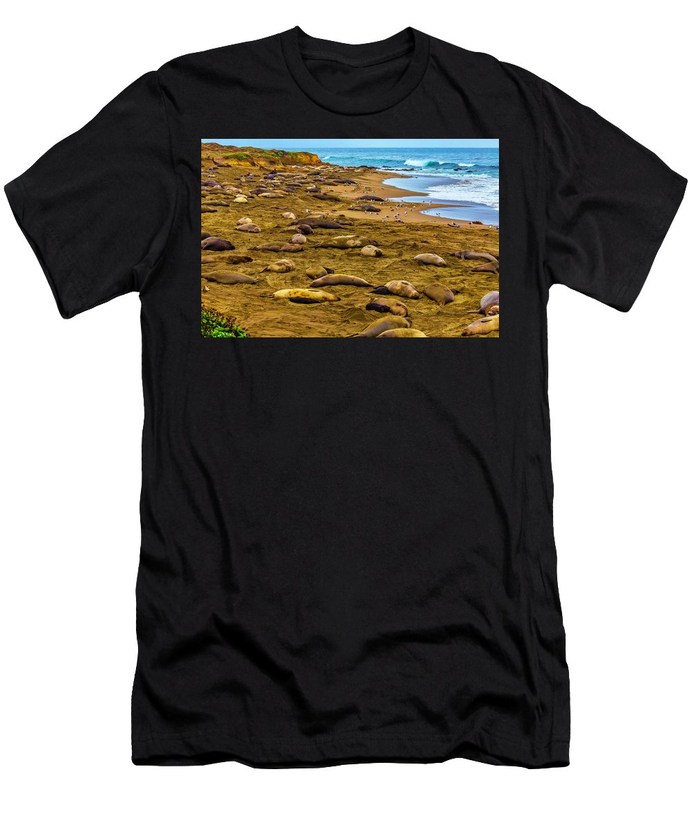 Elephant Men's T-Shirt (Athletic Fit) featuring the photograph Elephant Seals Near Cambria by Garry Gay