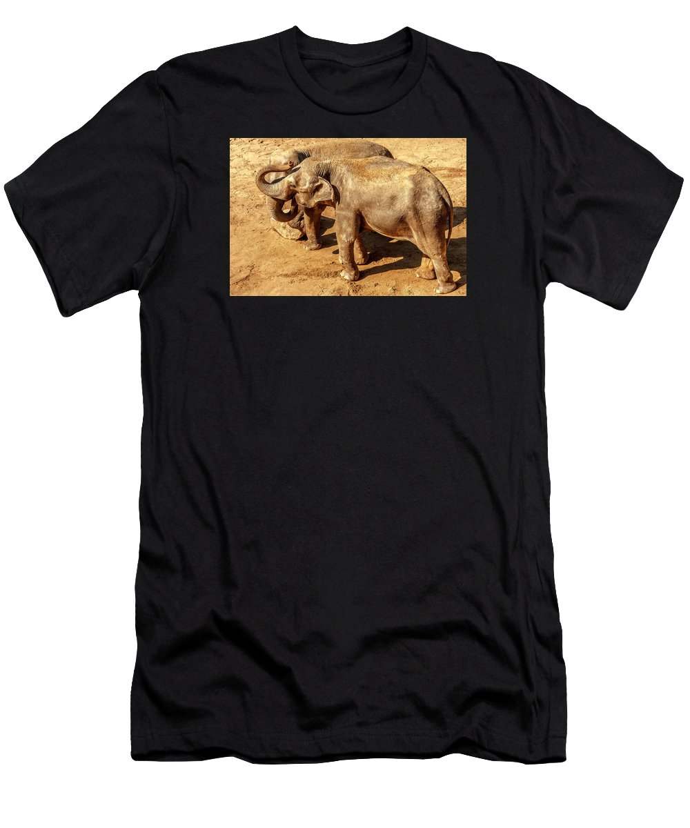 Elephant Men's T-Shirt (Athletic Fit) featuring the photograph Ellephants by Boris Kijevskij