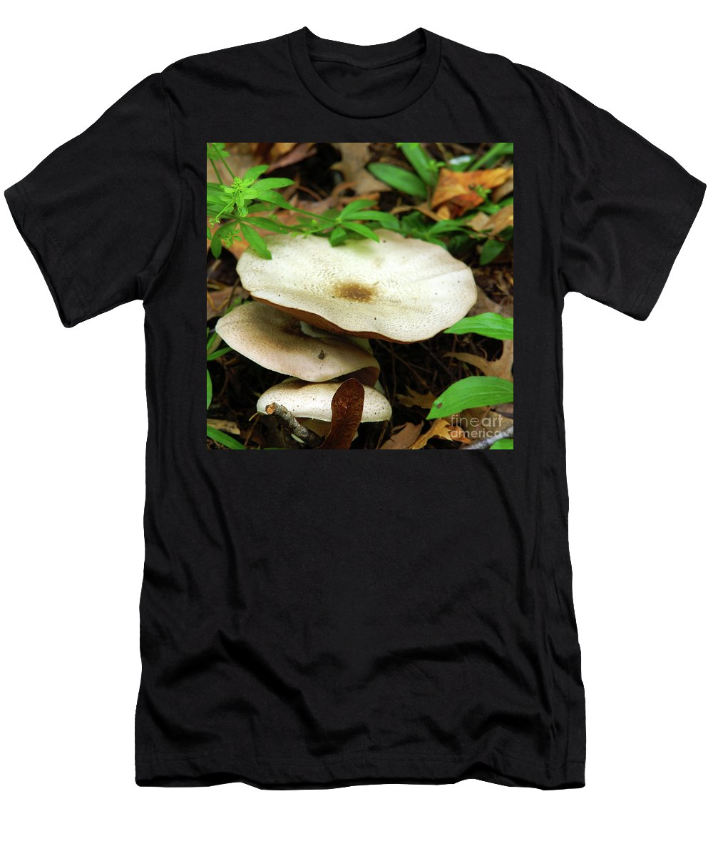 Green Men's T-Shirt (Athletic Fit) featuring the photograph Emerging From The Undergrowth by Robin Clifton