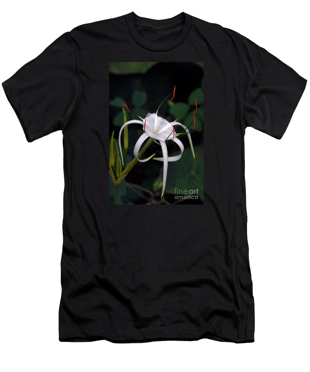 Spider Lily Men's T-Shirt (Athletic Fit) featuring the photograph En Pointe by Byron Varvarigos