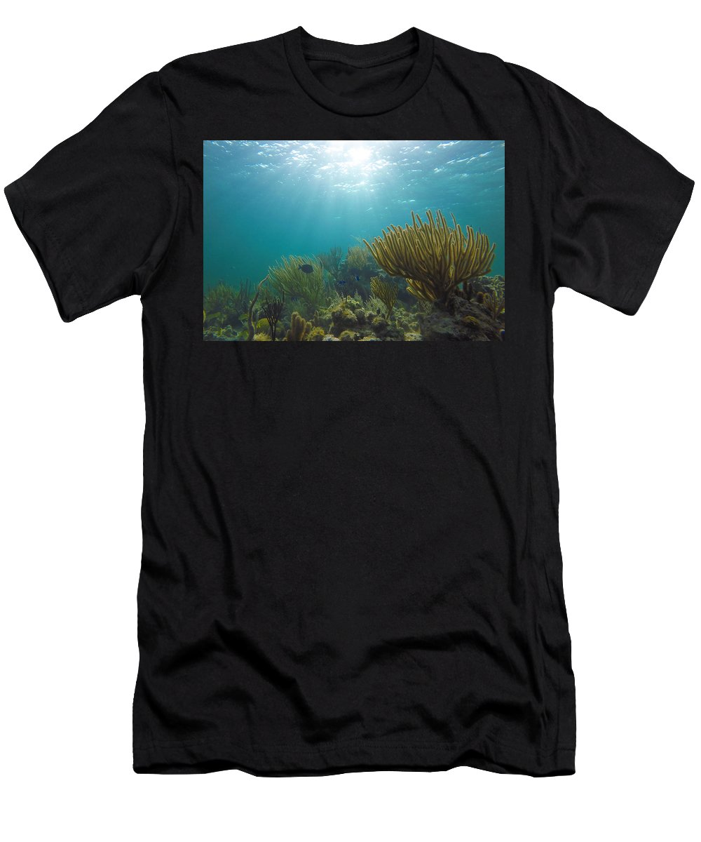 Coral Men's T-Shirt (Athletic Fit) featuring the photograph Enchanted Seas by Lance Laurence