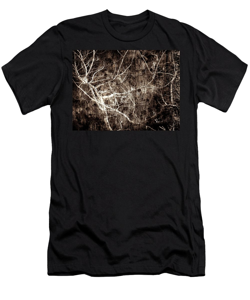 Tree Men's T-Shirt (Athletic Fit) featuring the photograph Endless by Gaby Swanson