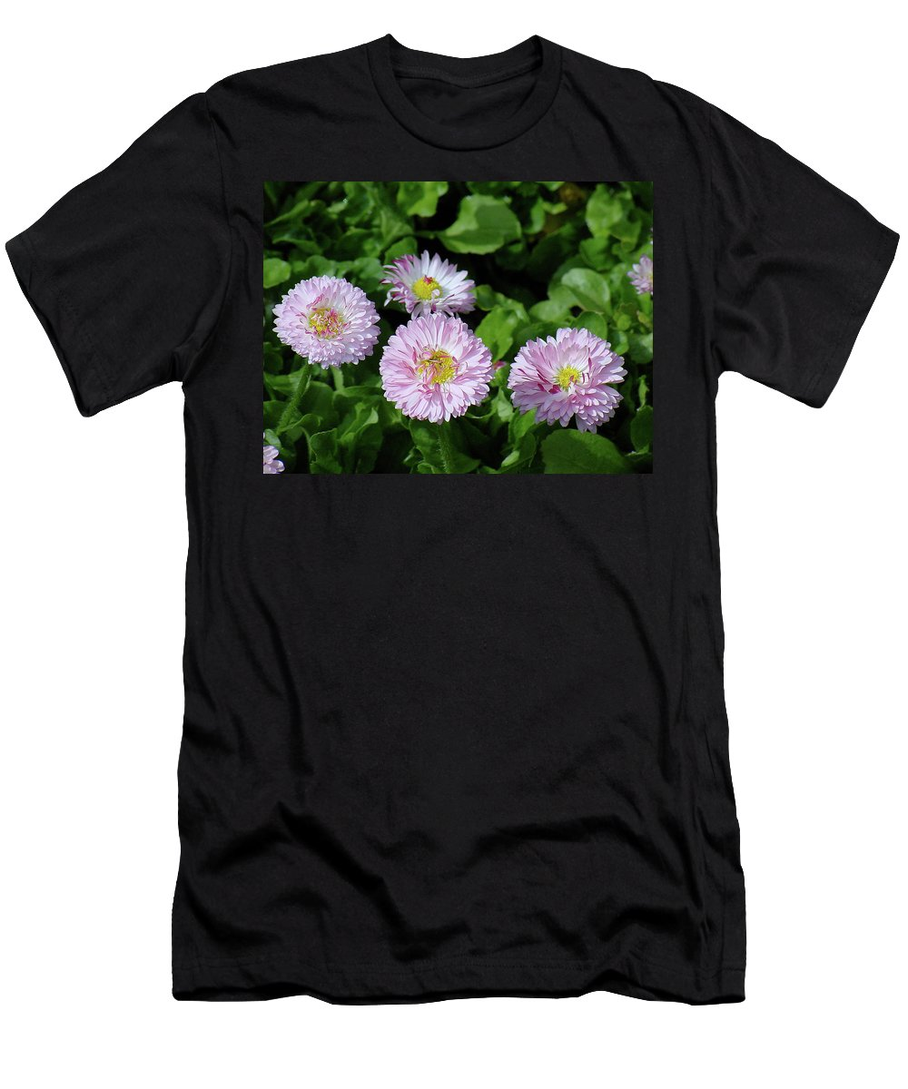 Flower Men's T-Shirt (Athletic Fit) featuring the photograph English Daisies by Shirley Heyn