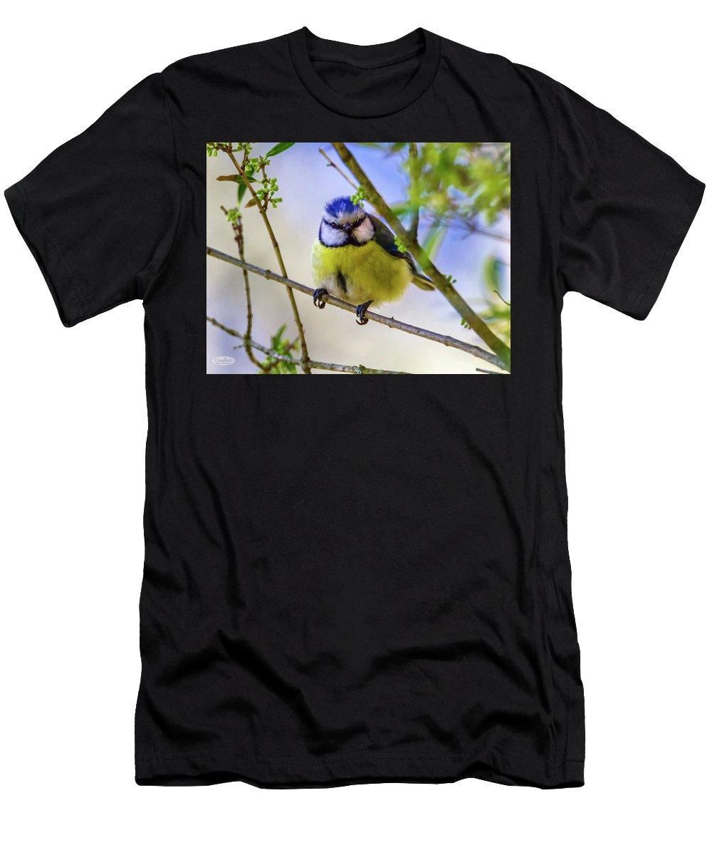 Blue Men's T-Shirt (Athletic Fit) featuring the photograph Eurasian Blue Tit, Cyanistes Caeruleus by Elenarts - Elena Duvernay photo