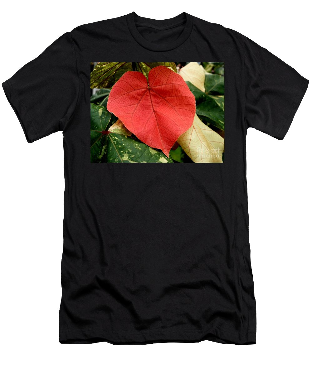 Hau Men's T-Shirt (Athletic Fit) featuring the photograph Evening Hau Tree Leaves by Mary Deal