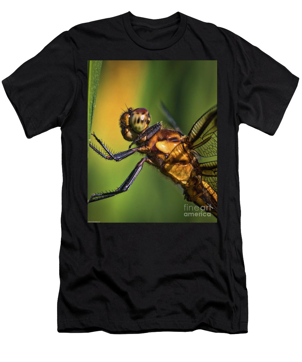Eye To Eye Dragonfly Men's T-Shirt (Athletic Fit) featuring the photograph Eye To Eye Dragonfly by Mitch Shindelbower