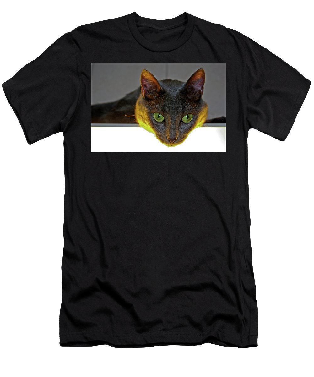 Cat Men's T-Shirt (Athletic Fit) featuring the photograph Eyes by Jarmo Honkanen