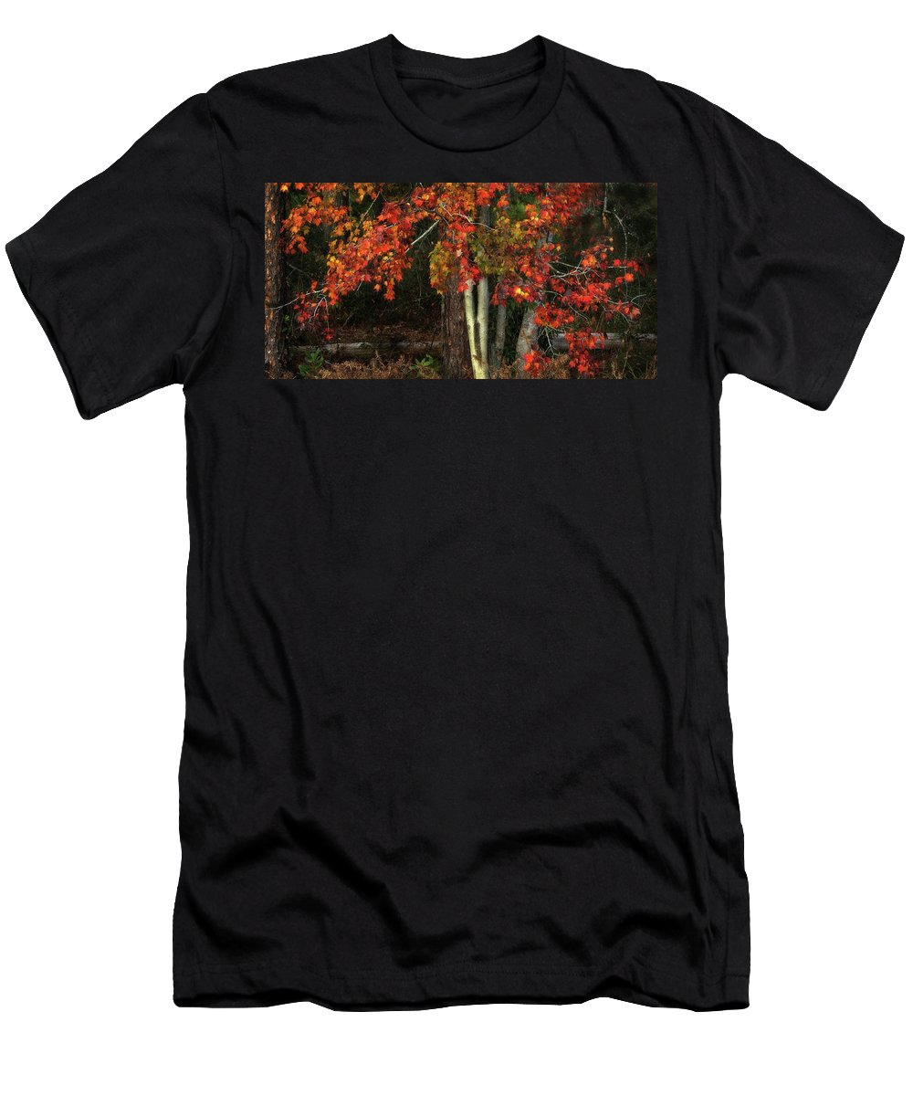 Panoramic Men's T-Shirt (Athletic Fit) featuring the photograph Fall Colors by Artie Rawls