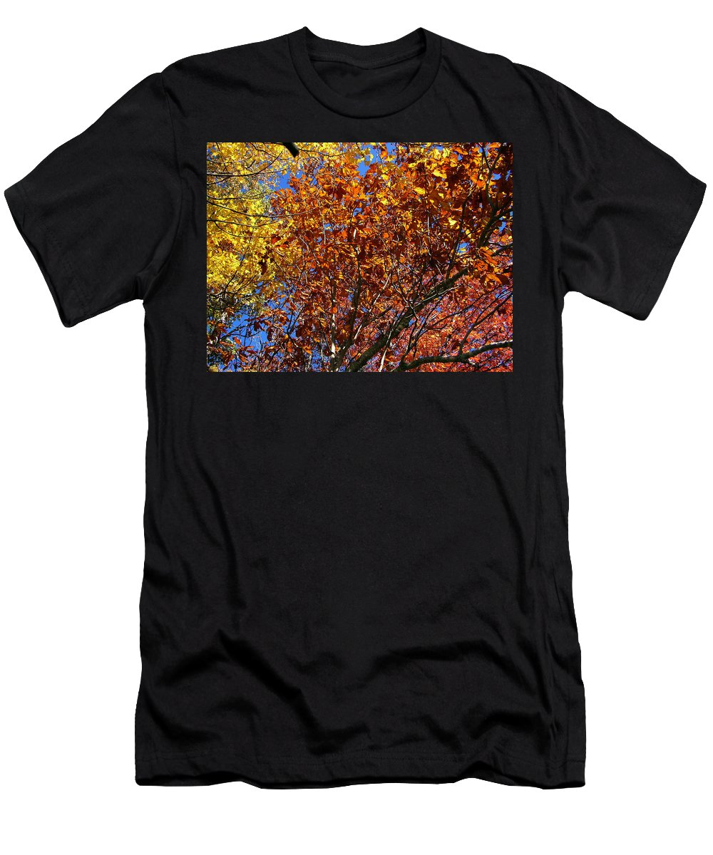 Fall Men's T-Shirt (Athletic Fit) featuring the photograph Fall by Flavia Westerwelle